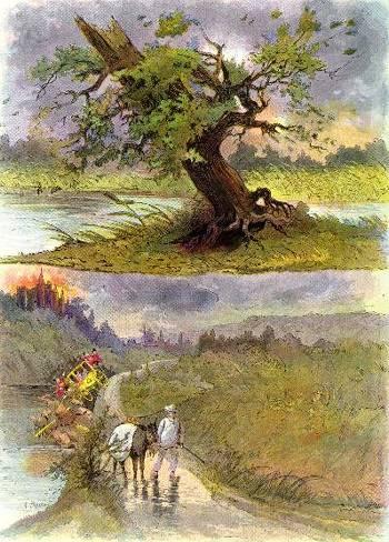 assis sous un chêne liège